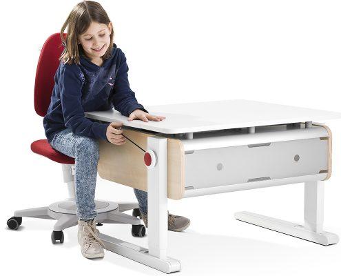 โต๊ะ เก้าอี้ Ergonomic