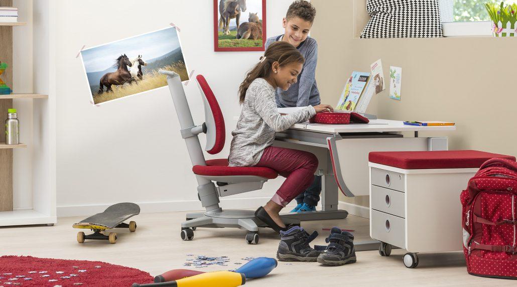 moll history moll funktion. Black Bedroom Furniture Sets. Home Design Ideas